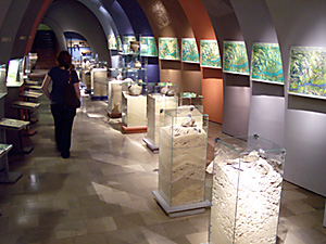 Exhibition in the Museum of Archeology in Krakow